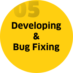 Step 5: Developing & Bug fixing