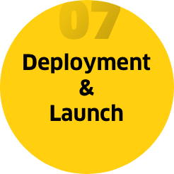 Step 7: Deployment & launch